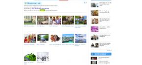 Tiếng Anh lớp 6 online tại nhà giữa mùa dịch Corona